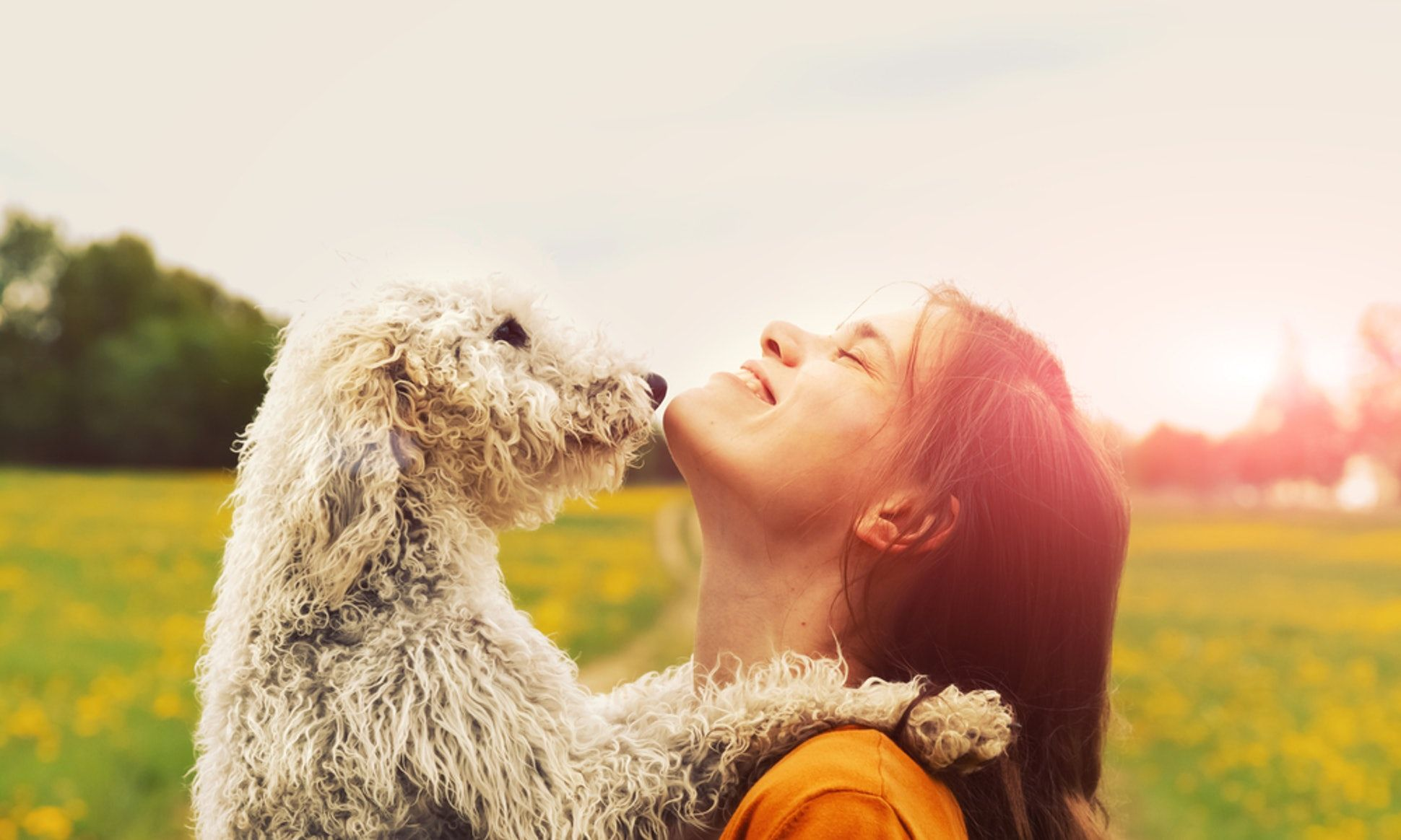 8 Ways To Know If You're Ready To Foster A Dog Pet