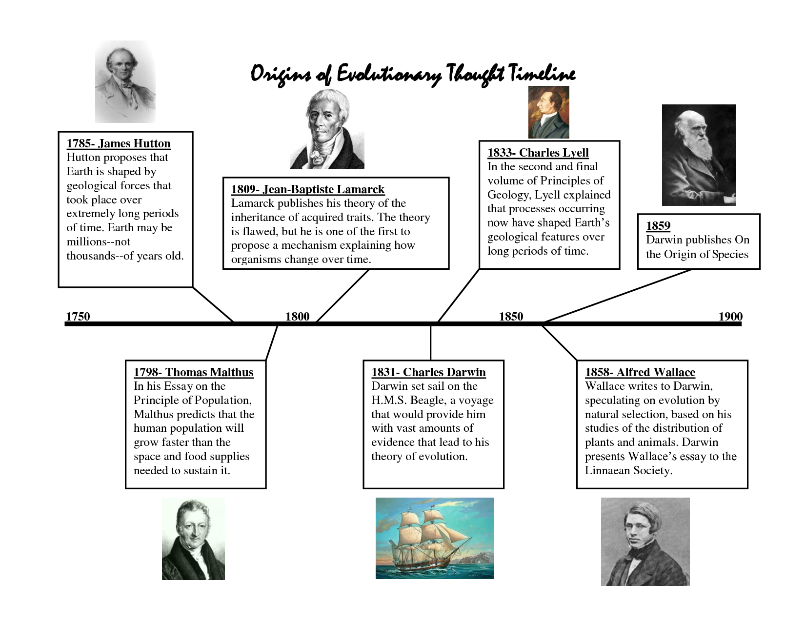 Timeline Of Psychology Theories