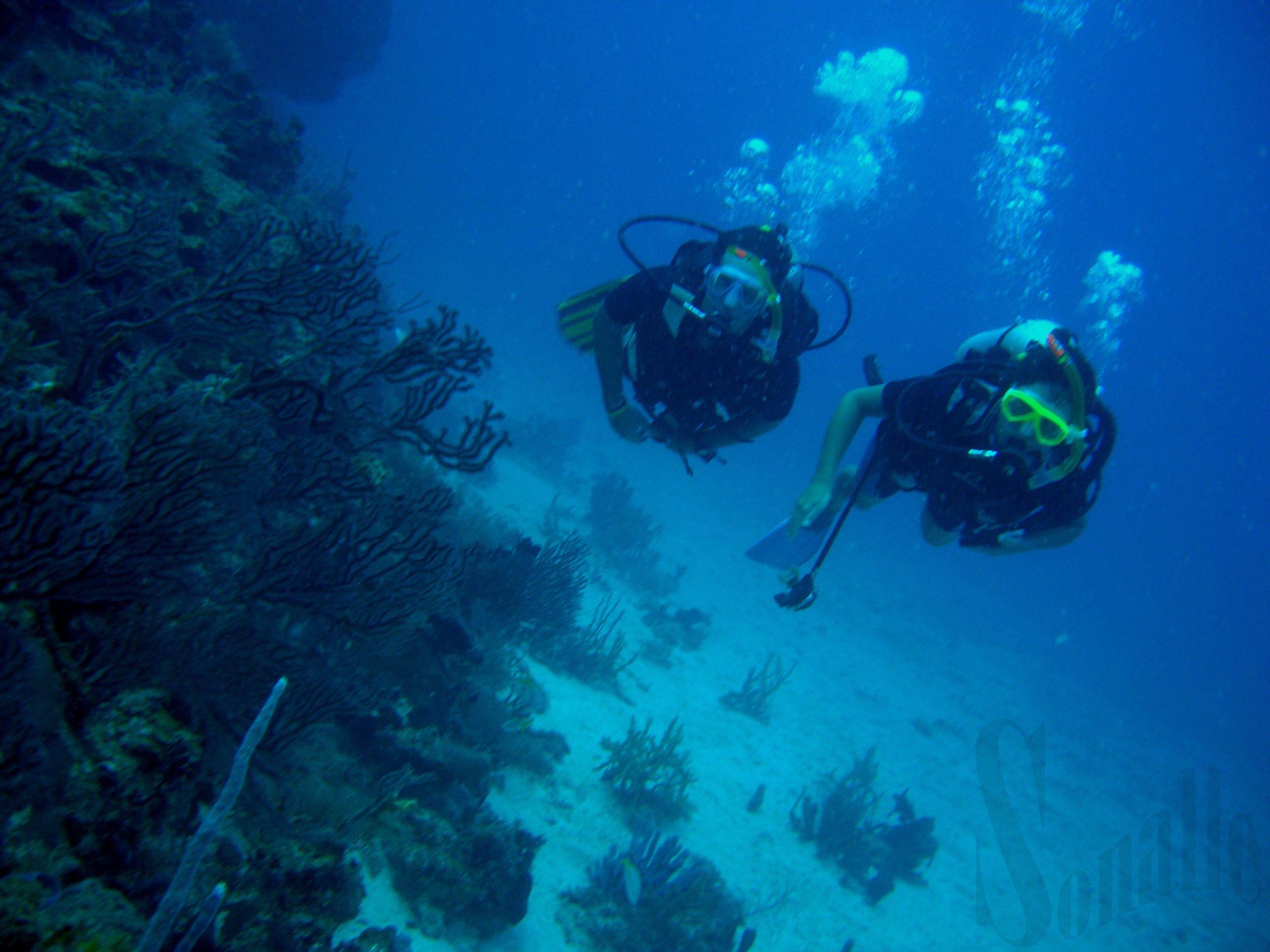 Tauchausflug mit U-Boot von Hurghada, Bootsausflug Sindbad U-Boot, Unterseeboot, Tauchen Sie mit dem U-Boot unter Wasser und beobachten Sie bunte Fische Korallenriffe.