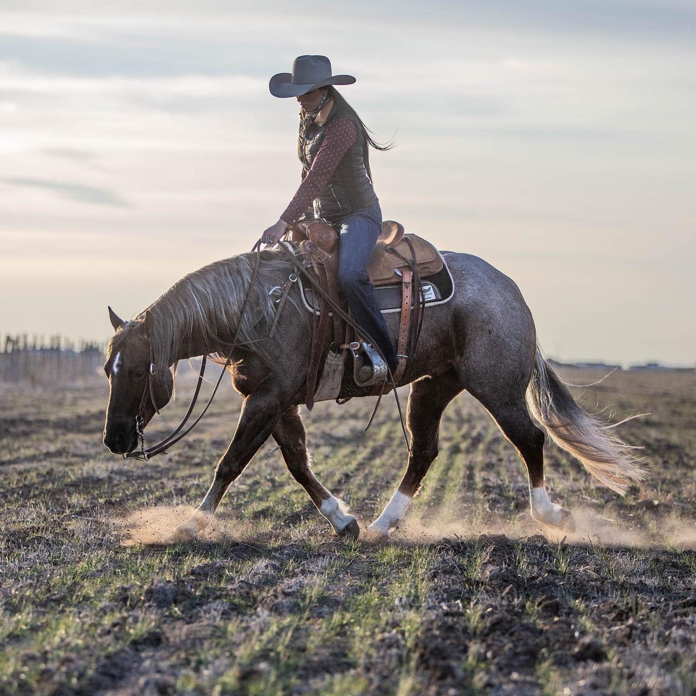 Nouveauté Western Horse Stable et cadre photo