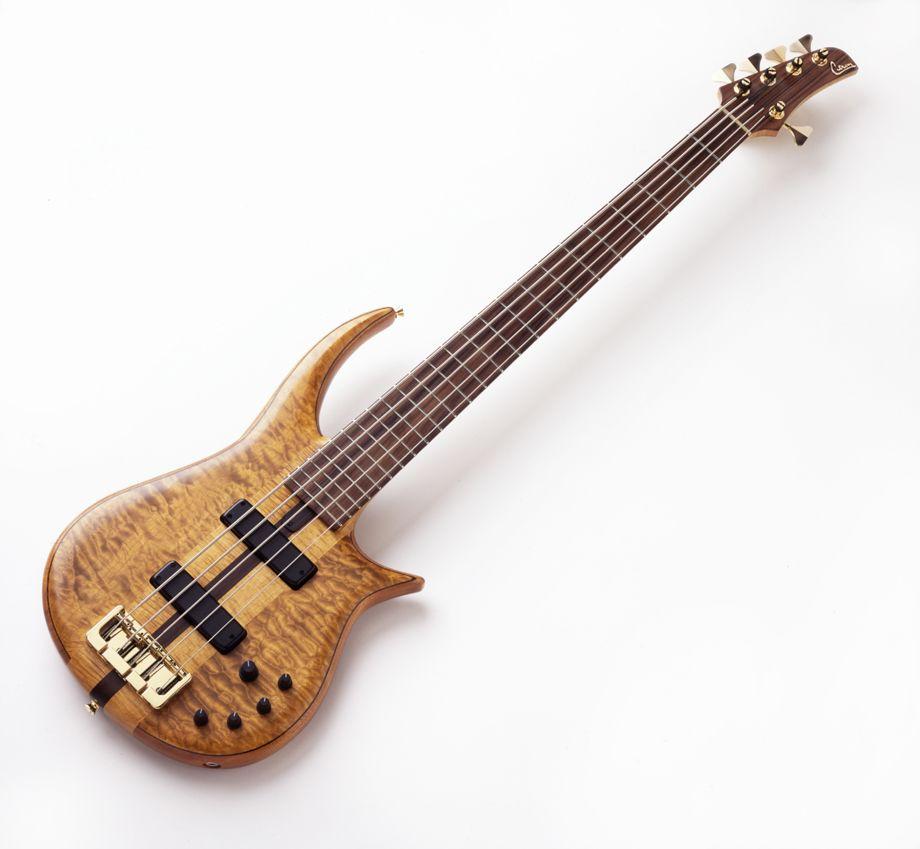 Nt5 Neck Through Body 5 String Harvey Citron Musik Pinterest