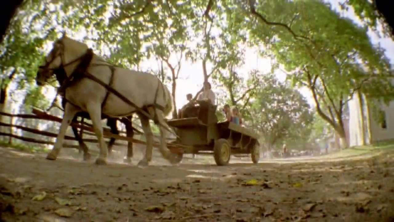Lancaster County Amish #golancasterpa #padutch #amish