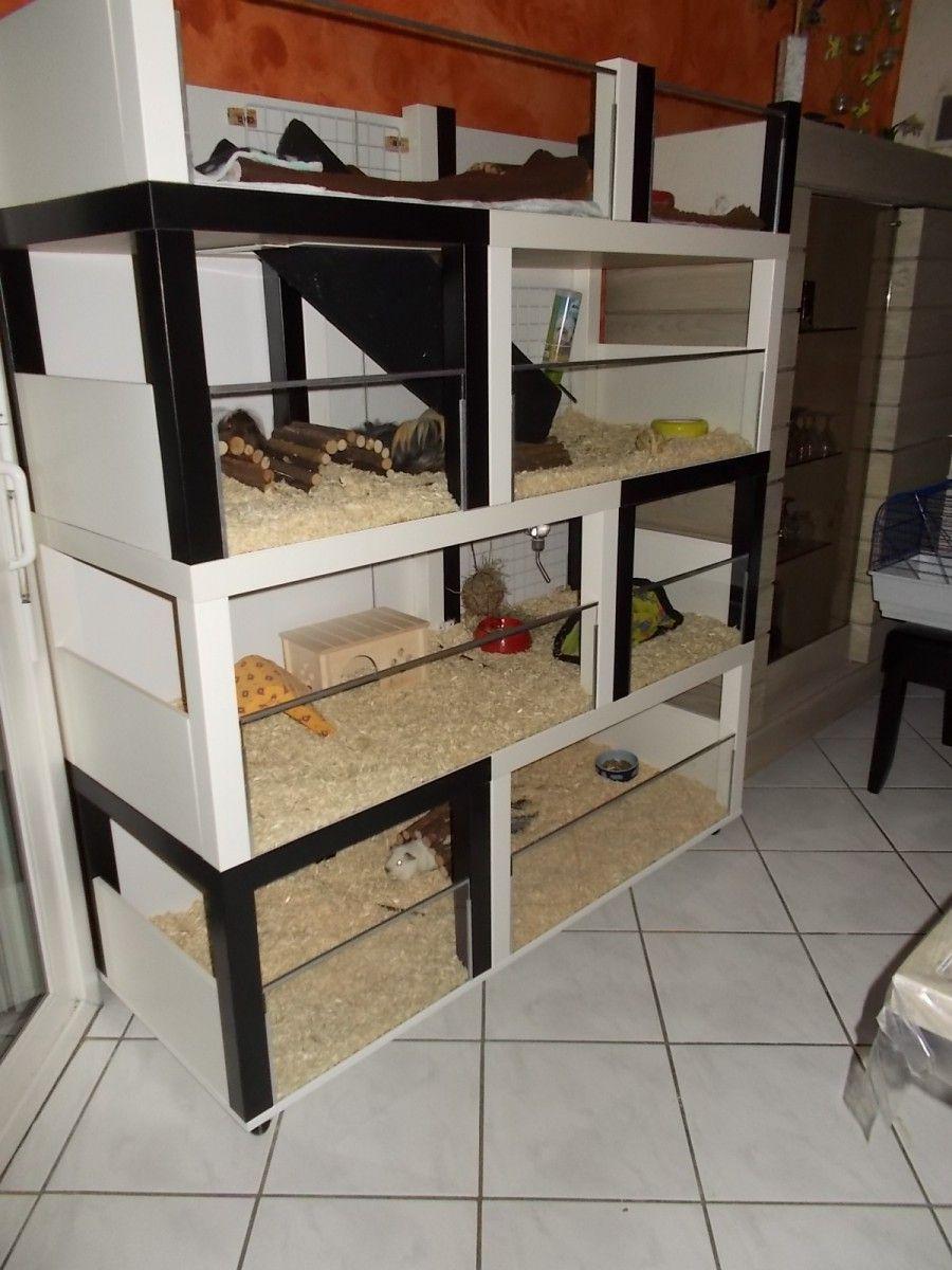 un meuble cochon d inde fabriquer petit prix cage. Black Bedroom Furniture Sets. Home Design Ideas