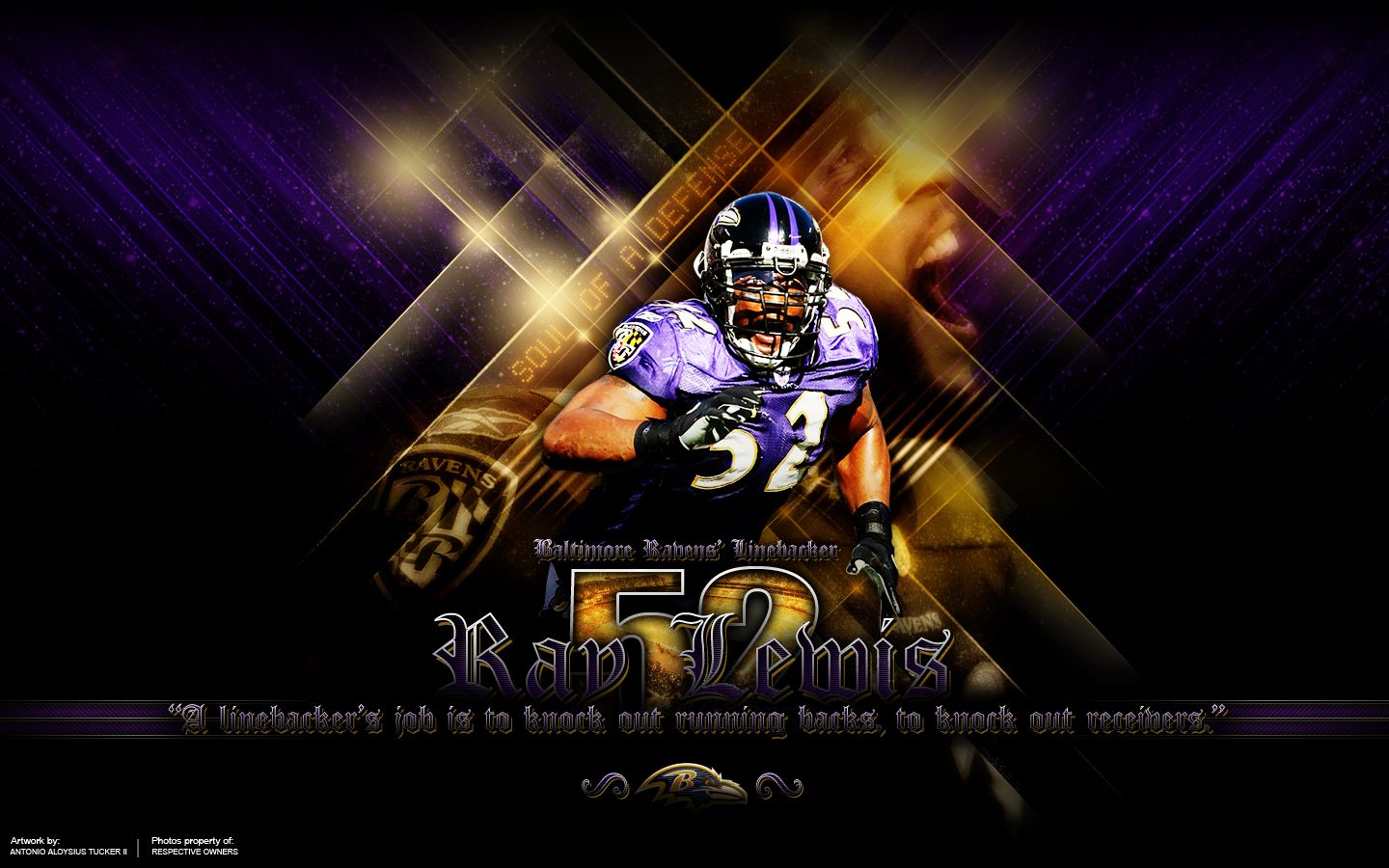 Collection Of Baltimore Ravens Wallpaper On HDWallpapers Wallpapers