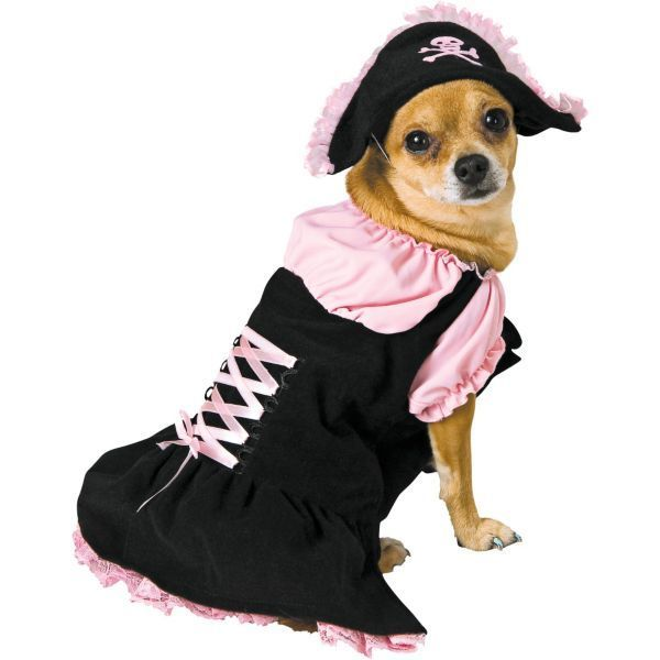 Pink Pirate Dog Costume My Puppy Might Not Like It But She Ll Be