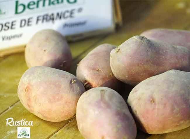 Comment choisir les pommes de terre à installer au potager ? TVs - comment installer la terre dans une maison