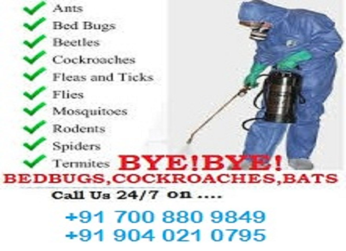 Fumigation Services Fumigation services, Bed bugs