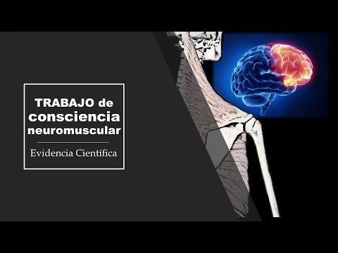 Consciencia neuromuscular: Hombro y Abdomen - El Blog de Check yourMOtion