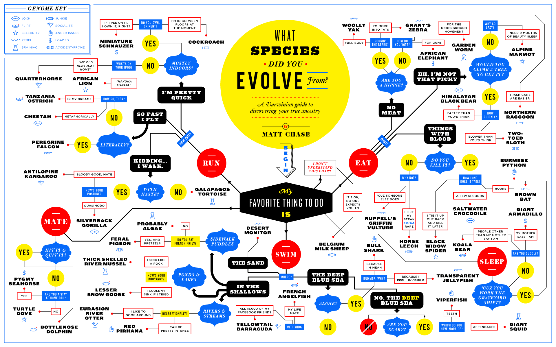 A tongue in cheek darwinian guide to discovering your true animal flowchart by matt chase via behance geenschuldenfo Choice Image
