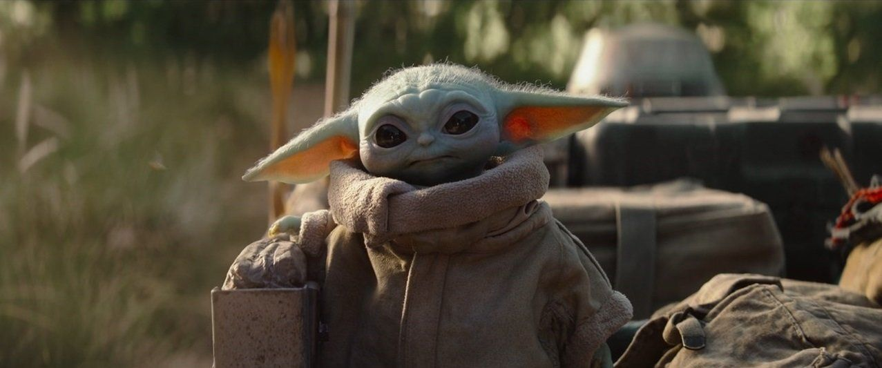 The Hands Down Funniest And Cutest Baby Yoda Memes On Twitter Mandalorian Me And My Dog Star Wars Fandom