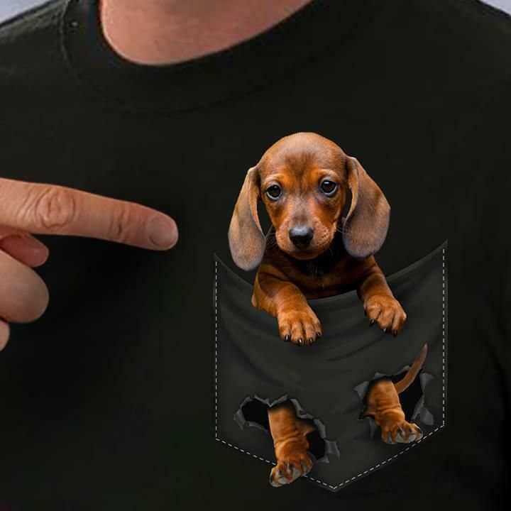 Dachshund In Pocket Men T Shirt Cotton S 6xl Fashion Clothing Shoes Accessories Mensclothing Shirts E Weiner Dog Puppies Funny Dachshund Dachshund Breed