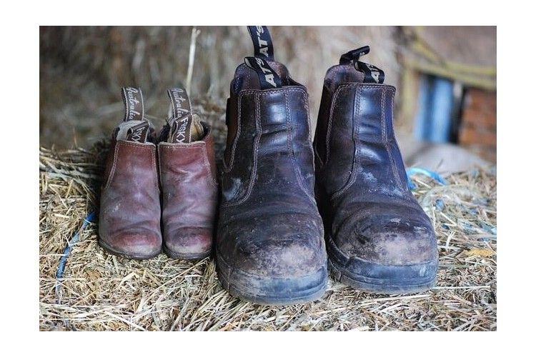 Como Limpiar Botas De Piel Y Zapatos De Cuero En 5 Sencillos Pasos Como Limpiar Zapatos Limpiar Zapatos De Piel Limpieza De Zapatos