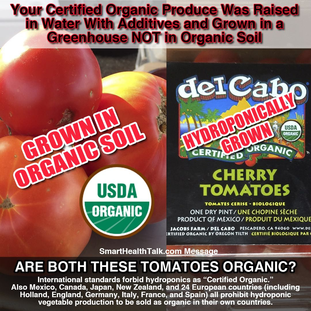 Are You Eating Hydroponic Organic Food Probably Since Our Usda