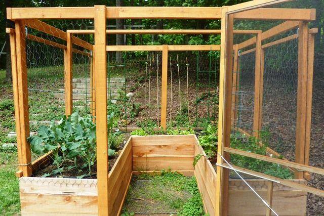 Amazing Enclosed Raised Bed Garden, Deer Proof, Square Foot Gardening, Vertical  Gardening