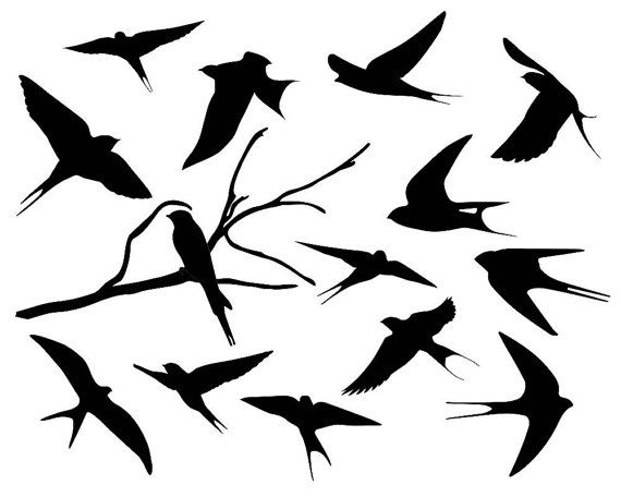 Swallow Silhouette Clipart Bird Silhouette By Theclipartpress Bird Silhouette Silhouette Art Bird Drawings