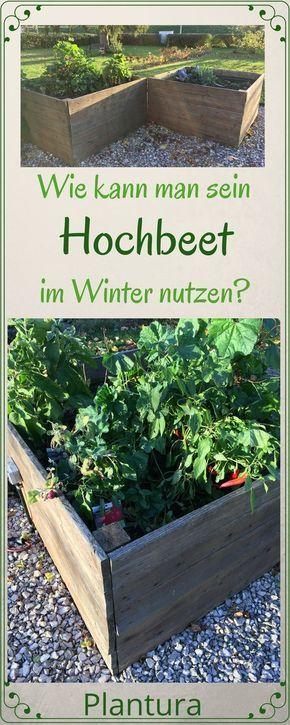 Garden Types Hochbeet Im Winter Garden Gardentypes Gardening Yard With Images Winter Vegetables Gardening Raised Garden Garden Types