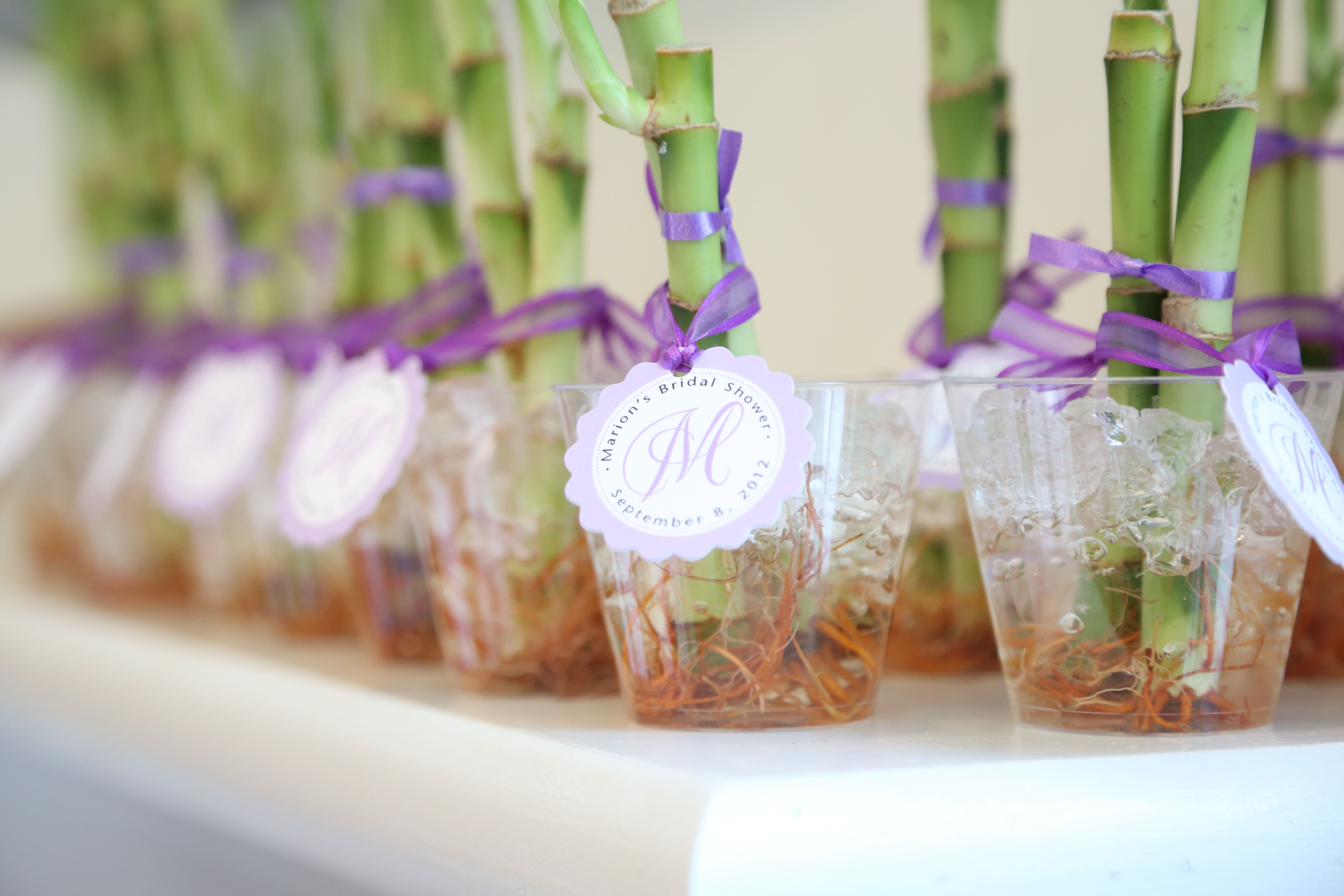 Lucky bamboo giveaways with personalized monogram tags