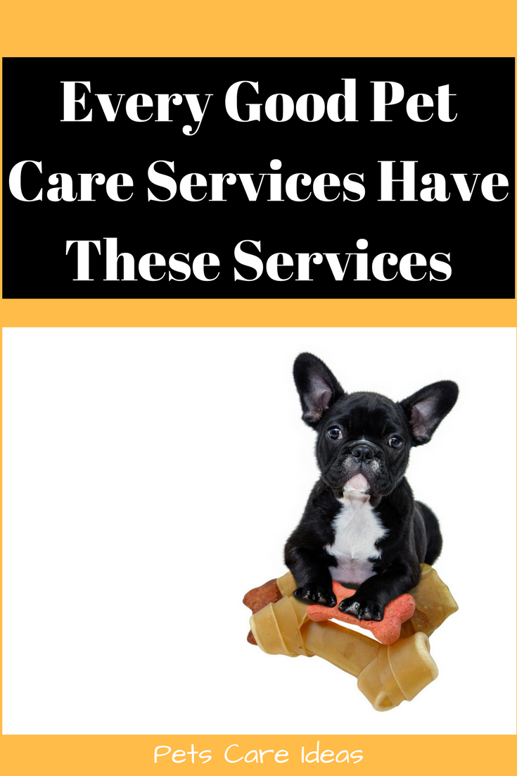 How to determine pet sitting in my home rates Pet care