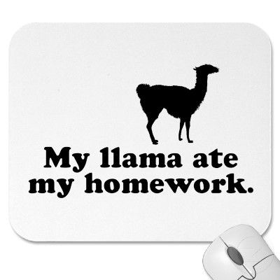 Google Image Result for http://rlv.zcache.com/funny_llama_mousepad-p144448488137801750envq7_400.jpg