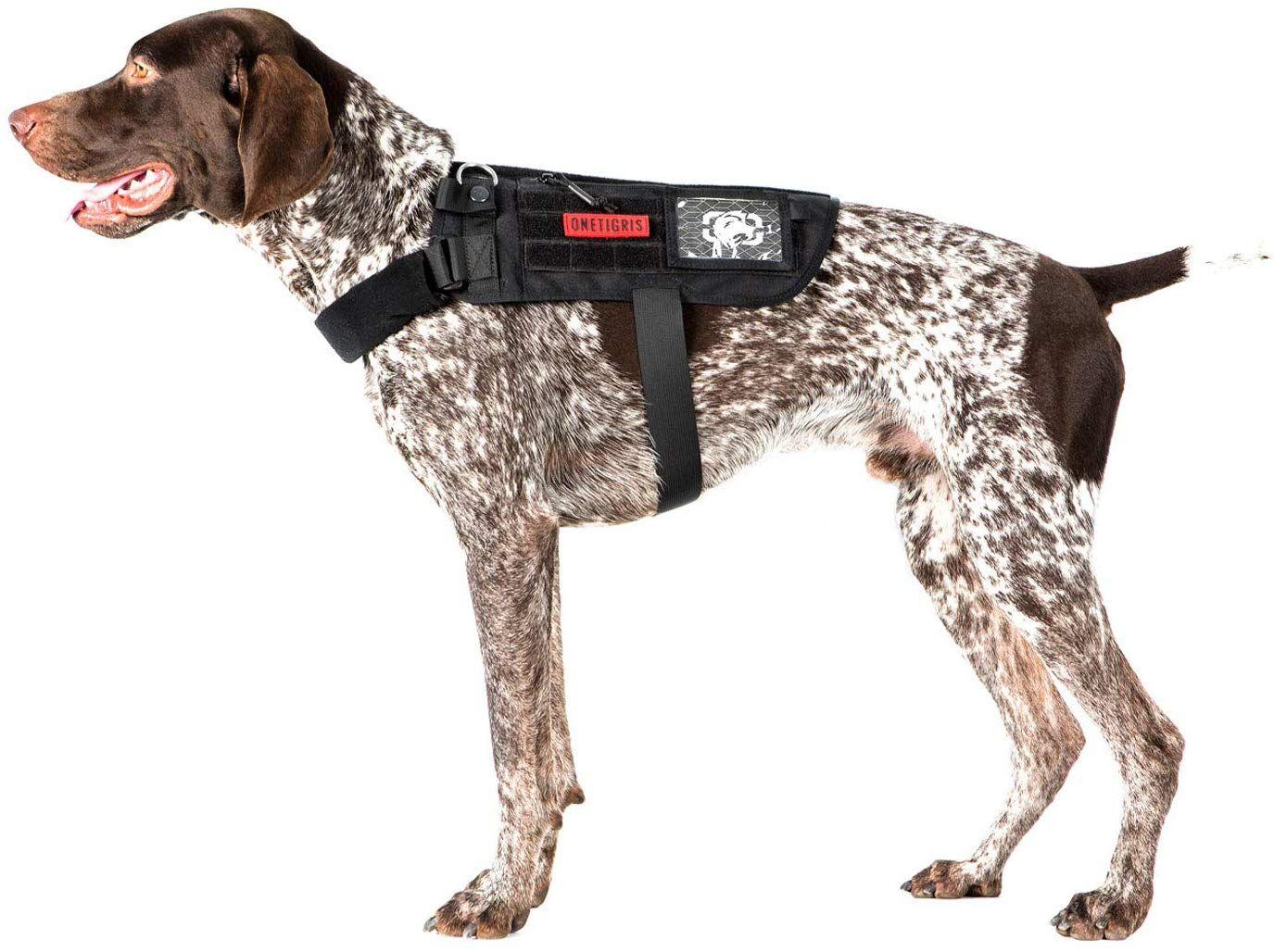 Pin Na Doske Best Dog Harness