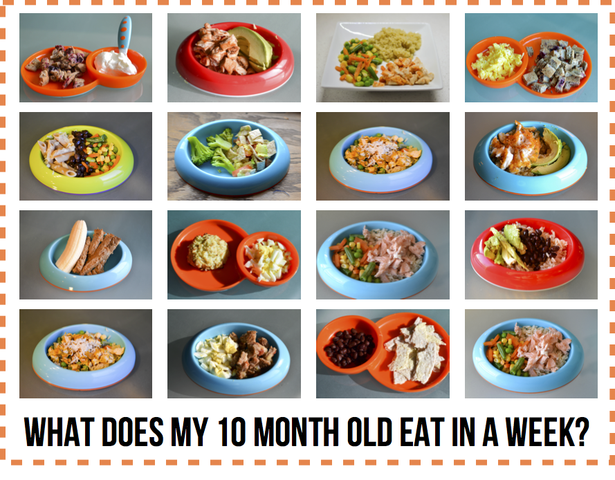 What Does My 10 Month Old Eat In A Week Baby Food Recipes