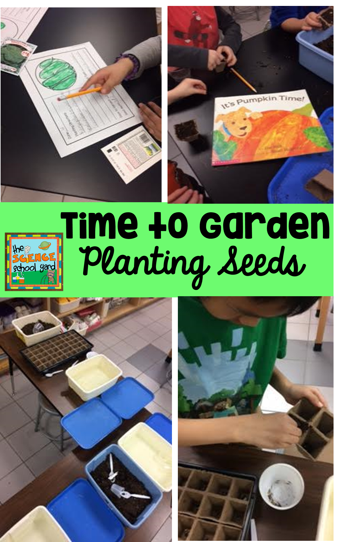 Ngss Plant Unit With Images