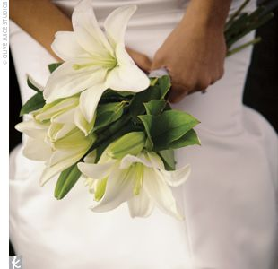 white oriental lilies | White lilies, Lily bouquet and Wedding