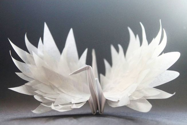 Is Mother Nature Origami Artist >> Origami Artist Shares His Diary Of Paper Cranes Origami