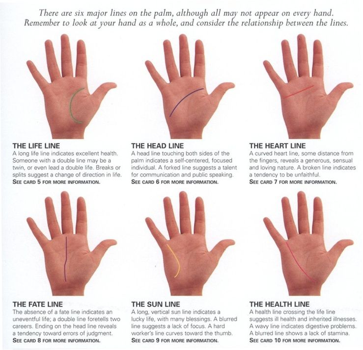 Self Palm Reading Guide User Guide Manual That Easy To Read