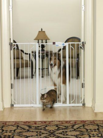 Amazon Com Carlson 0941pw Extra Tall Walk Thru Gate With Pet Door