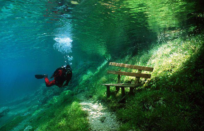 Волшебное место в Австрии – Grüner See  С августа по апрель - это обычный парк, а весной талая вода с гор затапливает его на 4-8 метров. И так каждый год.
