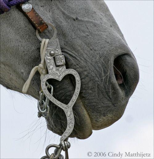 Heart Bridle