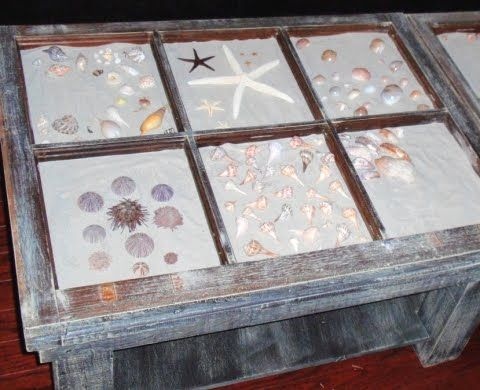 A seashell collection in a diy display coffee table. Old window frames were  used to - Organize A Seashell Collection In A Vintage Printer Tray, Used As