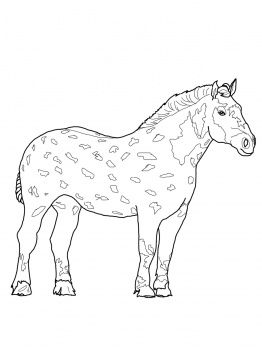 Percheron Horse Horse Coloring Pages Percheron Horses Horses