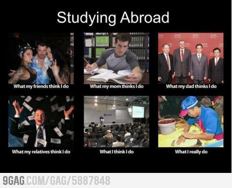 What Do You Think Of This Studying Memes Student Memes Student Life