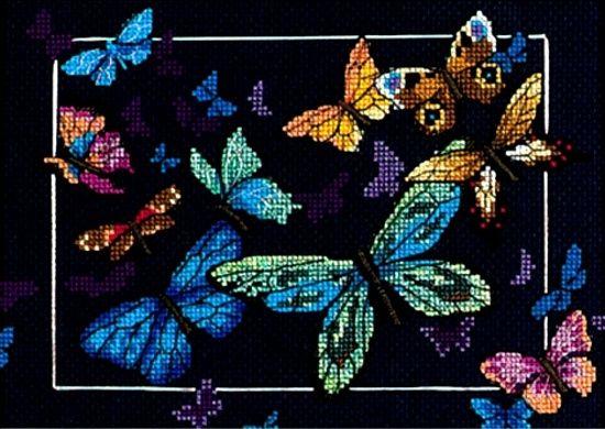 Exotic Butterflies | EXOTIC BUTTERFLIES