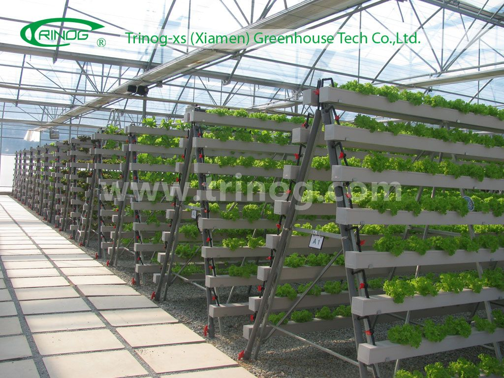 Advanced hydroponics grow system nft photo details about for Indoor gardening documentary