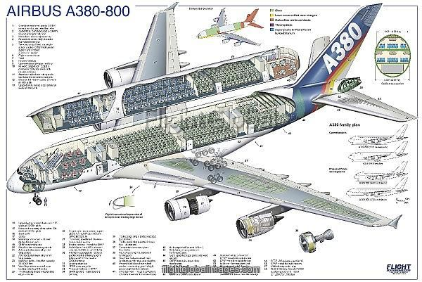 airbus a380-800 cutaway poster | avaiton art | airbus a380 ... diagram of inside firework #6