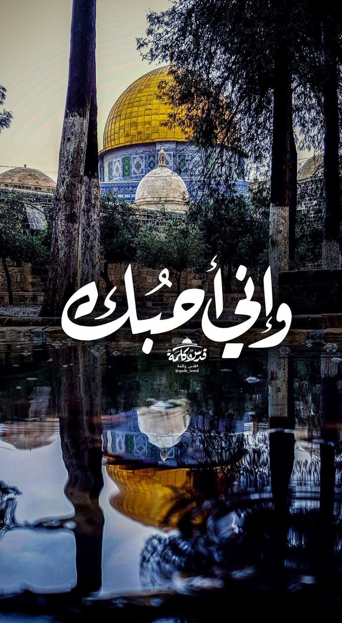 ضعها غلاف لجوّالك .. وليكن الاقصى موجود في كل تفاصيـل حياتنا   Palestine  art, Palestine flag, Islamic artwork
