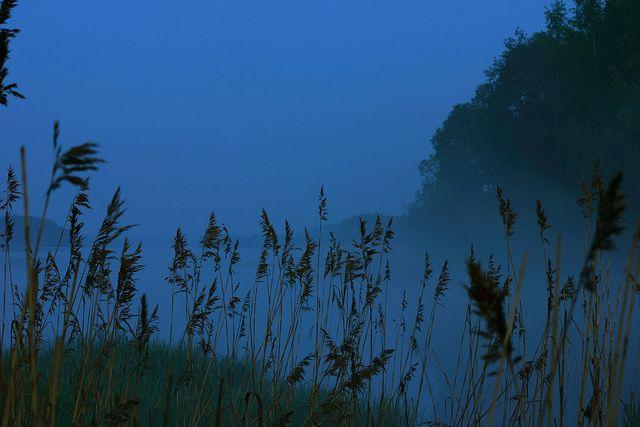 Haze by Marjaana Pato on Flickr.