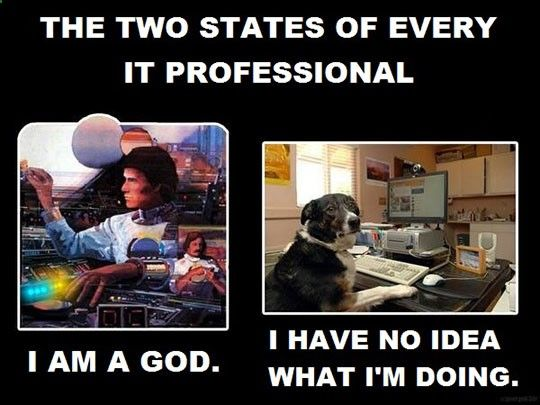 Every IT Professional