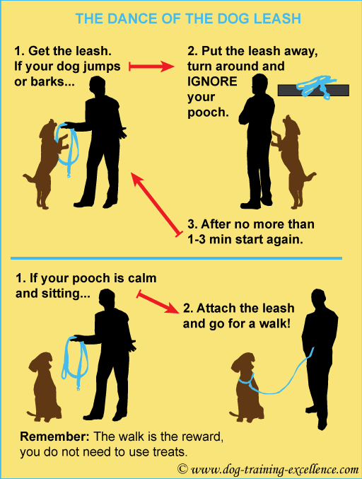 Leash Training Your Dog Dance Of The Dog Leash Dog Walking Tips Dog Training Tips Dog Training Dog Training Obedience