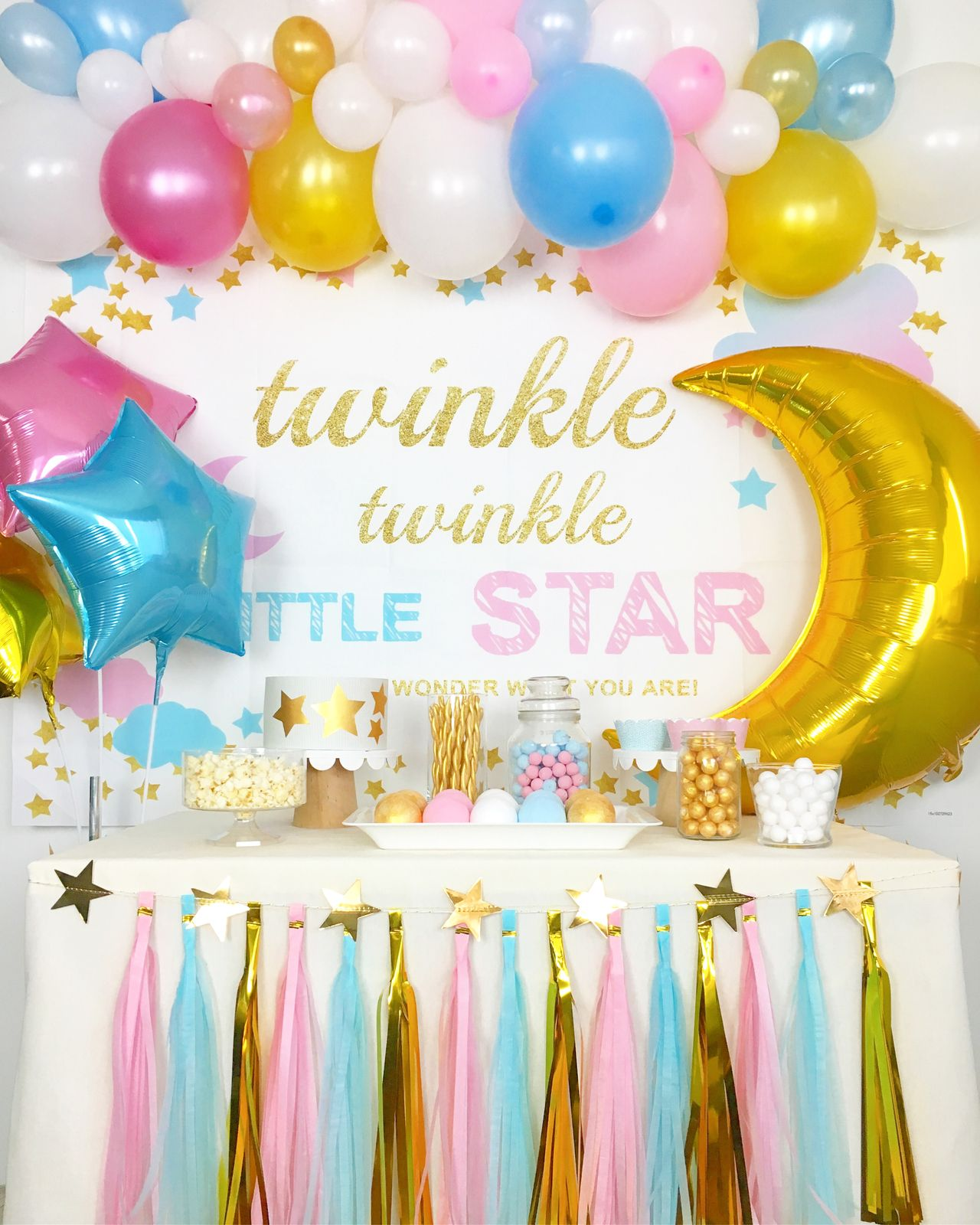 Twinkle Twinkle Little Star Gender Reveal Baby Shower Party Deco Gender Reveal Party Decorations Baby Gender Reveal Party Decorations Baby Gender Reveal Party