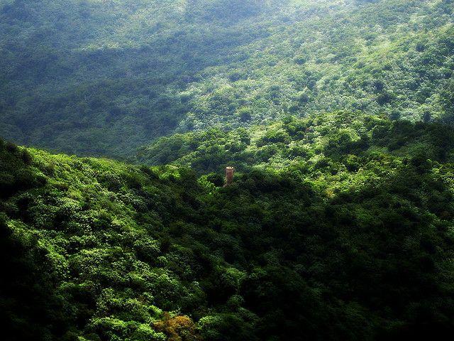 El Yunque - torre Yokahu