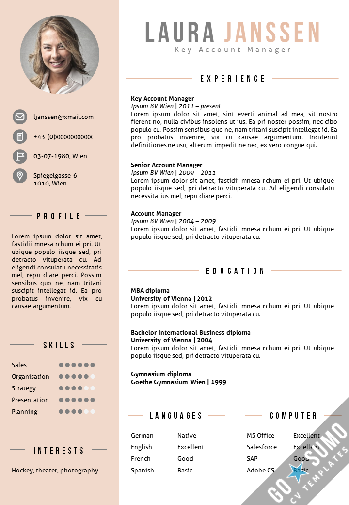 Cv Template Vienna Pinterest Cv Template Resume