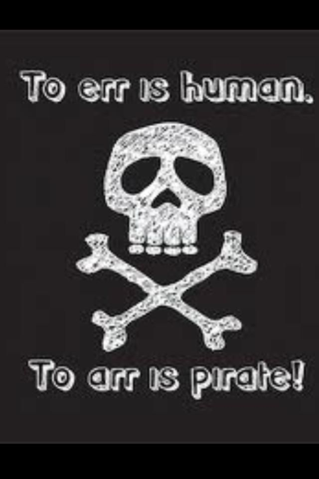 5/' x 3/' Pirate Flag To Err is Human to Arr is Skull and Crossbones Banner