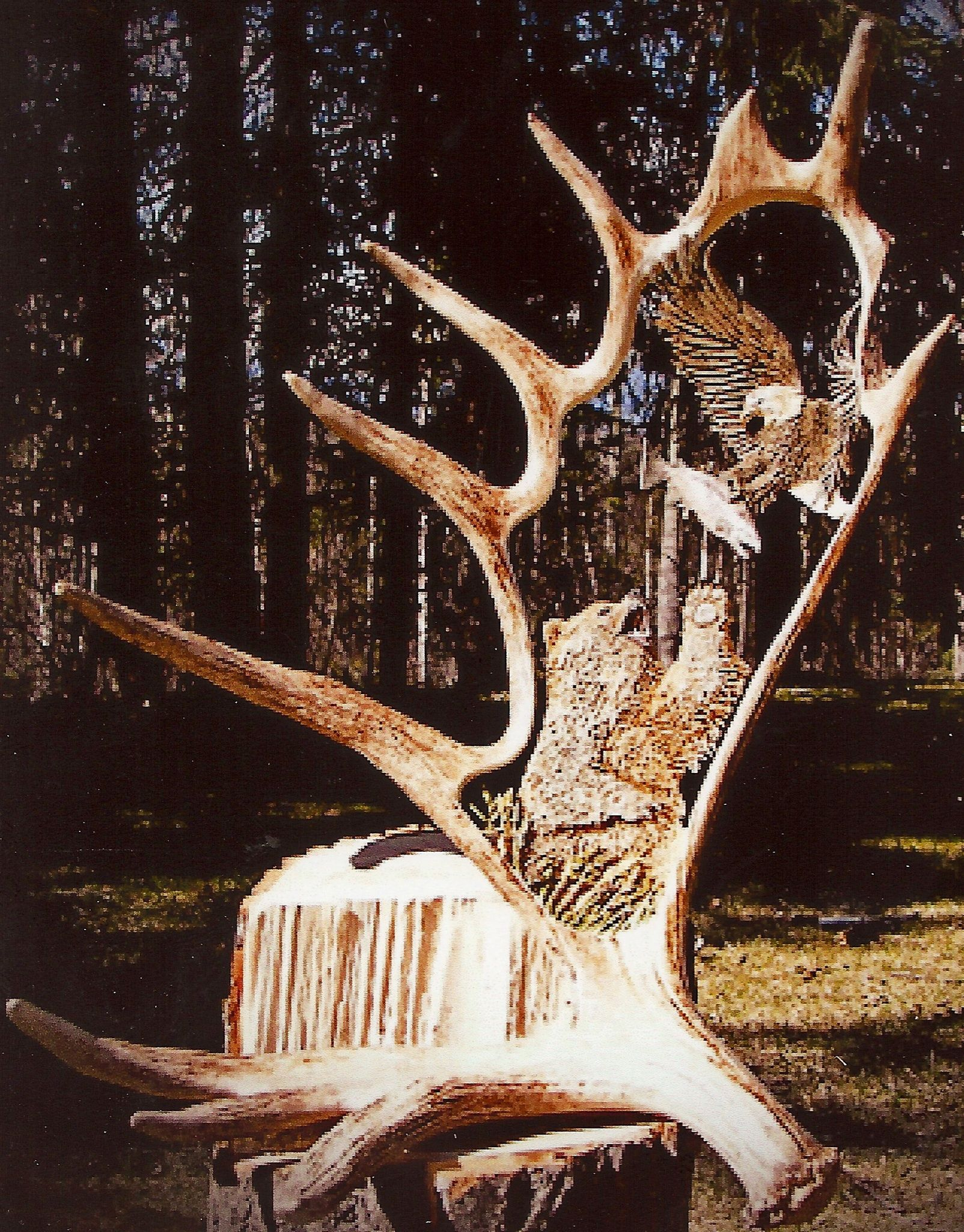 Antler carving this is amazing hunting stuff
