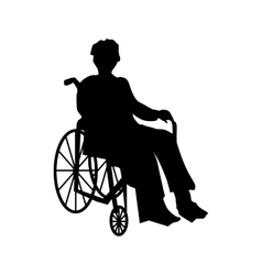 Man Or Woman In Wheelchair Silhouette Dog Icon Human Icon Cat Icon