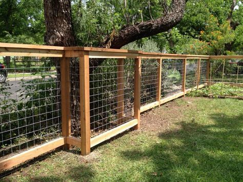 5ft Tall Cattle Panel Fence With 2x6 Inch Cap Backyard