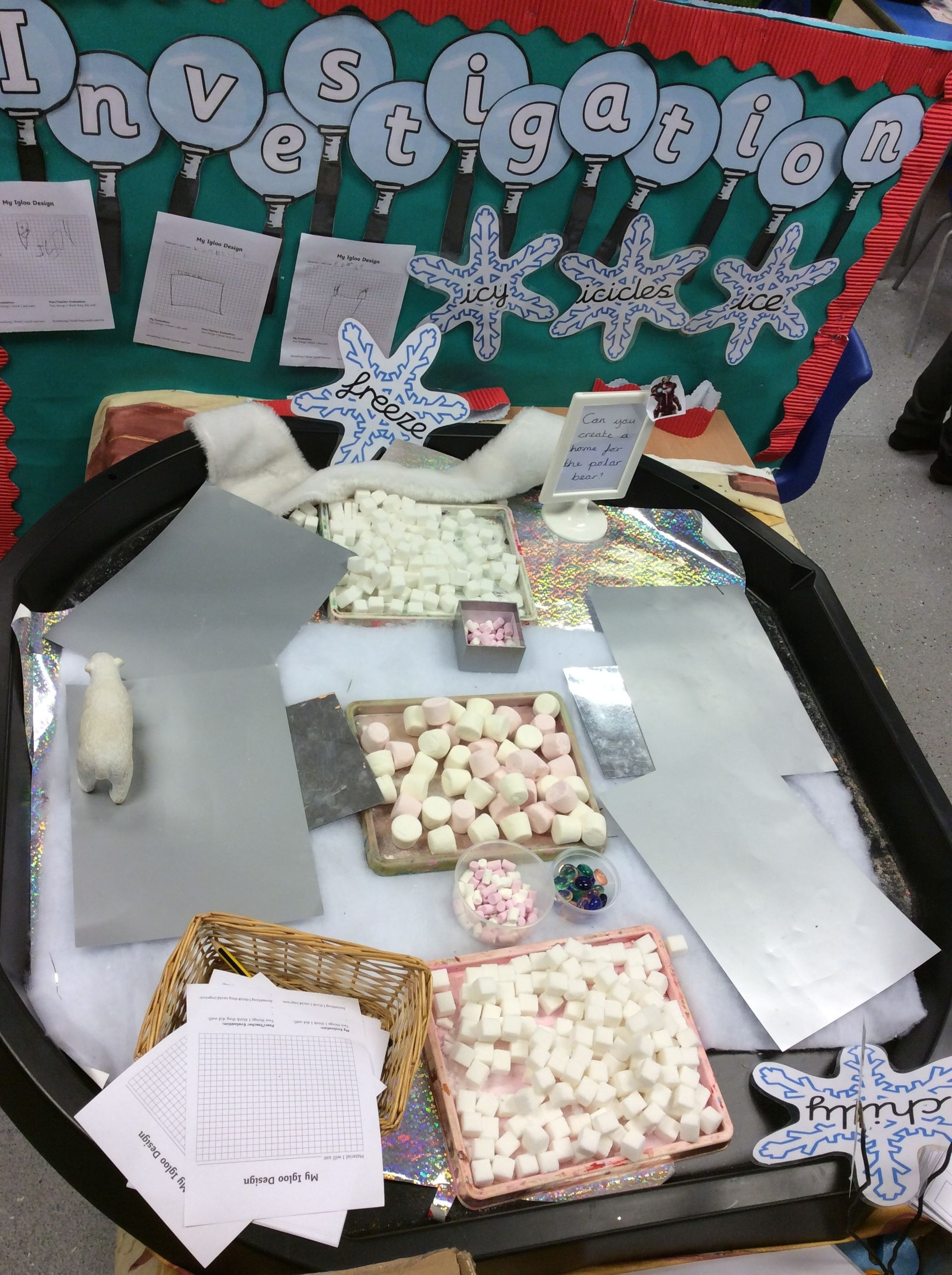 Winter Investigation Table And Challenge Eyfs Winter